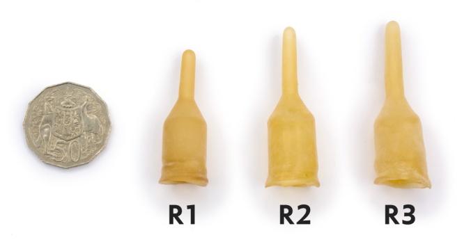 Kangaroo-R1-R2-R3