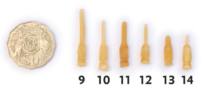 Syringe-9-10-11-12-13-14
