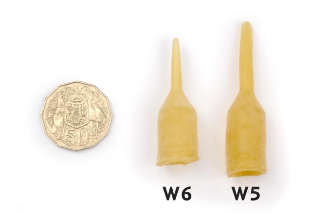 Wallaby-W6-W5